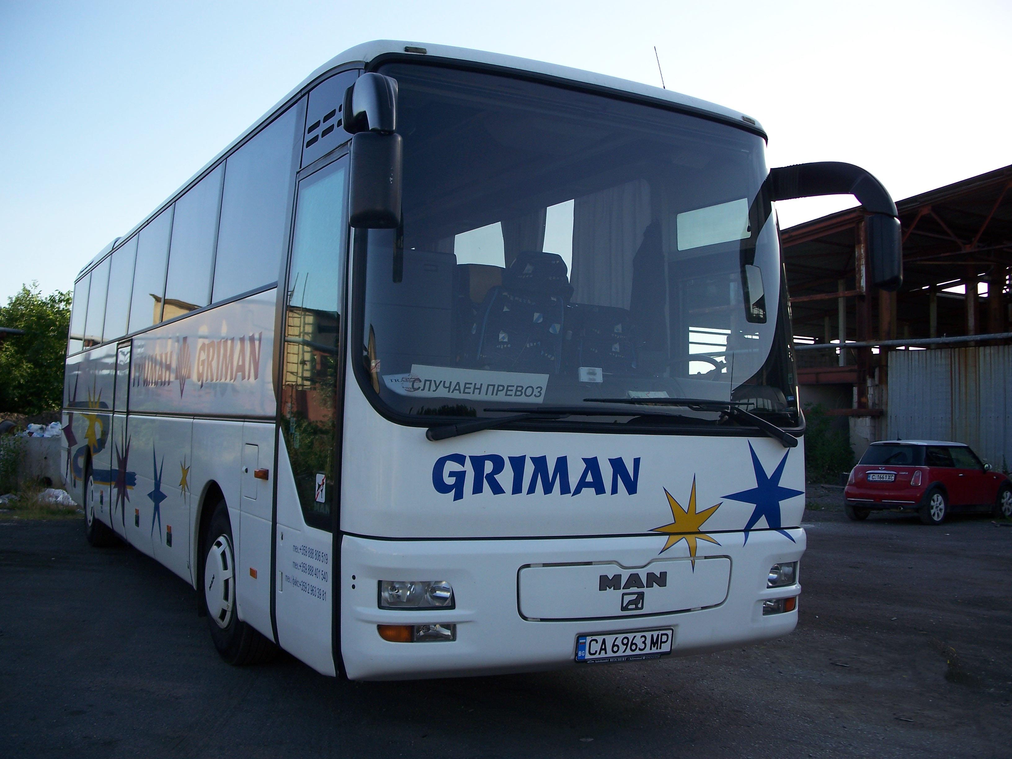 Buses 021